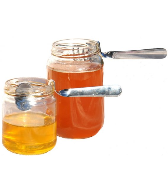 lot de 2 Cuillères à Miel en inox