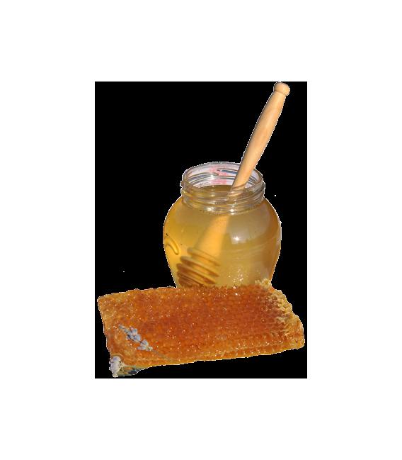 Honiglöffel