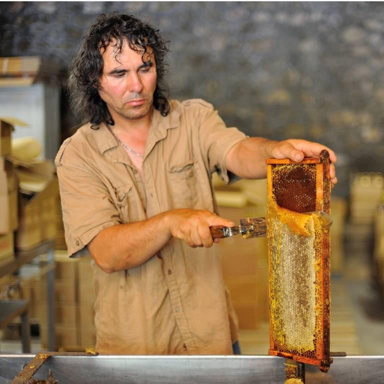 laurent apiculteur